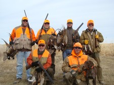 Pheasant Groups
